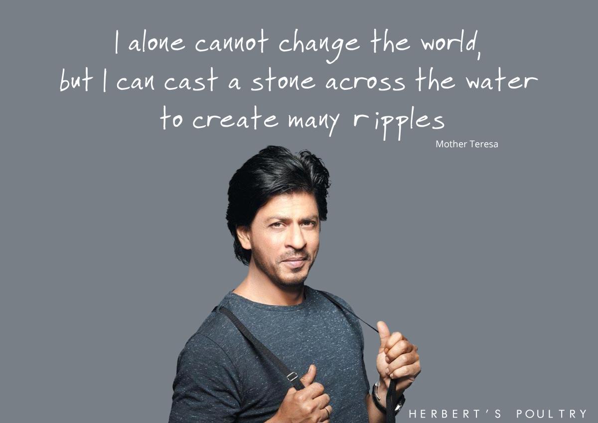 Shahrukh 5